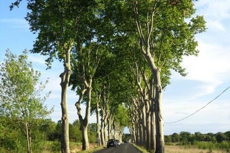 Typical French road, probably made by Romans